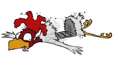 6106180-asi-que-por-que-ese-pollo-cruzar-la-calle-de-todos-modos-despues-de-ser-atropellado-por-un-coche-sup